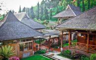 9 Penginapan dan Hotel Murah di Ciwidey Bandung yang Bagus dan Nyaman