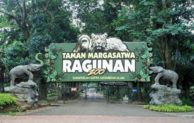 10 Hotel dekat Kebun Binatang Ragunan Jakarta Selatan Tarif Murah